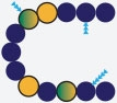 Variability chart